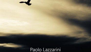 Paolo Lazzarini - In volo - copertina disco gabbiano