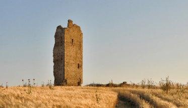 campagna con grano maturo, dorato, e una torre abbandonata