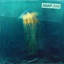 Copertina del disco de I Quartieri: ASAP