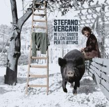 Copertina del disco di Stefano Vergani: Mi sono giusto allontanato per un attimo