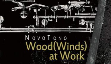 meccanica di un clarinetto nella copertina del disco dei Novotono: Wood(Wind) at Work