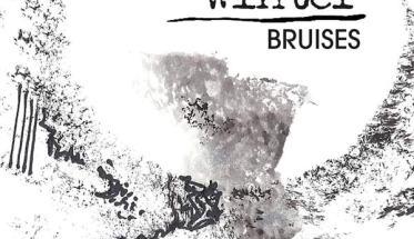 Copertina disco dei She likes winter: Bruises