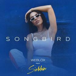 La copertina del singolo Songbird