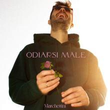Marchettini in copertina del disco Odiarsi Male