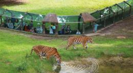 zoo-thoiry-1