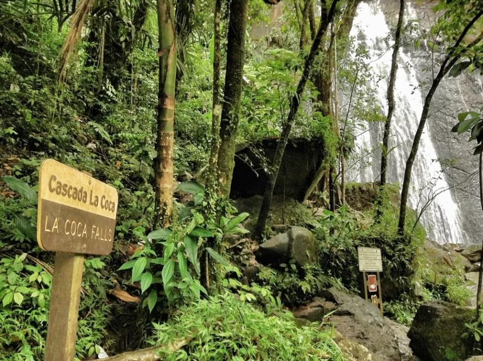 Cascada La Coca; Reserva Nacional El Yunque, Puerto Rico