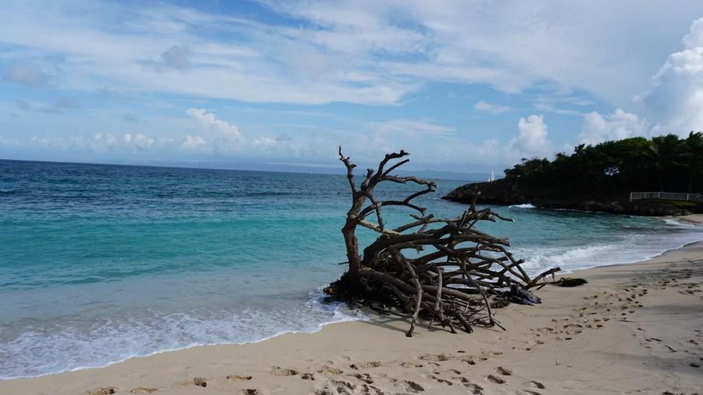 Bahía Príncipe Cayo Levantado
