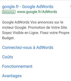 annonce adwords - Pourquoi utiliser Google Analytics, Adwords, Trends..