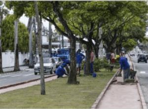 Jardinagem já está sendo colocada na ciclovia da Avenida Beira Rio