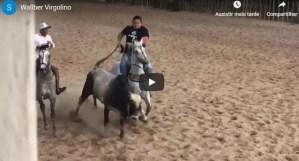 Deputado paraibano pratica vaquejada e cai do cavalo – VEJA VÍDEO