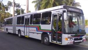 Semob-JP cria linha 123, reativa 5600 e reforça outras quatro linhas de ônibus na Capital