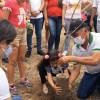 Em Boqueirão: APA 8 Verde comemora Dia da Árvore com a presença de autoridades e populares