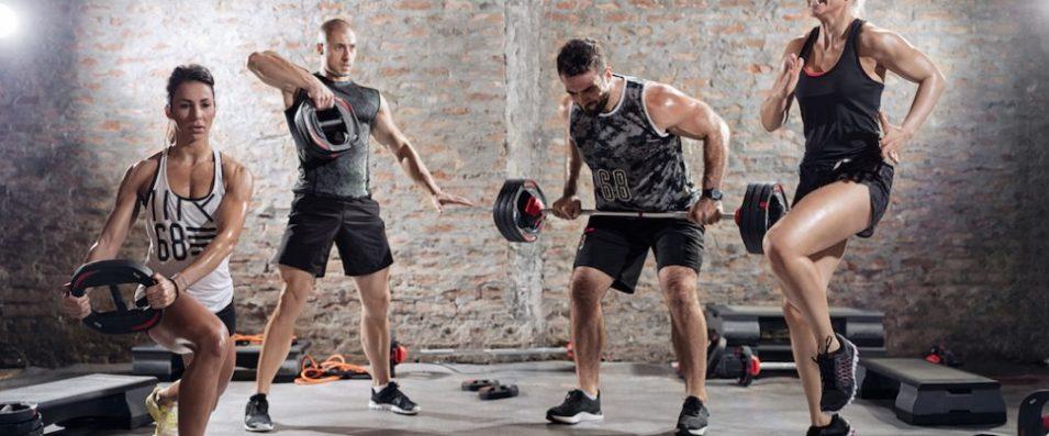 cross-training Testosterona: O Hormônio Masculino Por Excelência