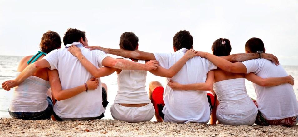 amigos Ensaio Sobre a Amizade