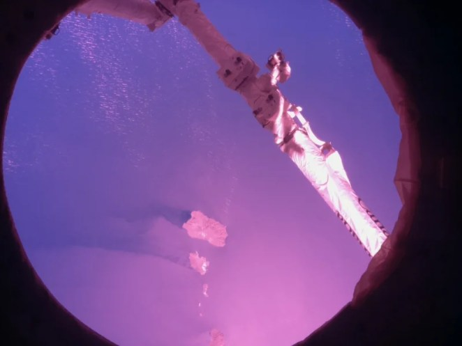 The CANADARM from Astro Pi Izzy's view of Earth