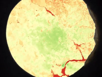 NDVI conversion image by Pardubice Pi team – Astro Pi Mission Space Lab experiment