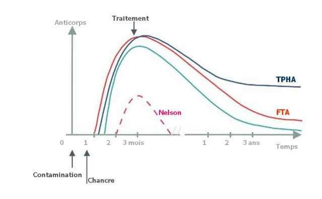 Cinétique d'évolution des anticorps TPHA et VDRL lors de l'infection par la syphillis