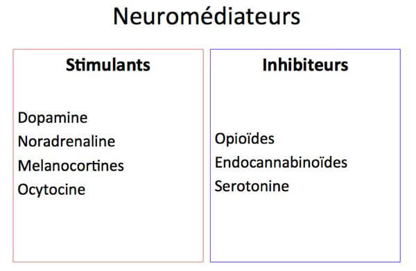 neuromediateurs