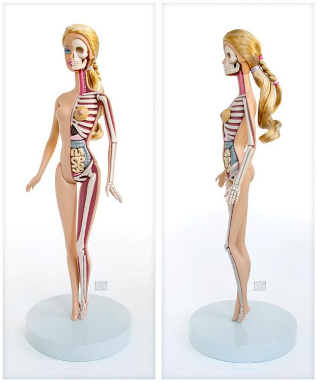 barbieanatomie