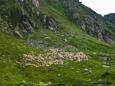Transfăgărășan_estrada montanhas