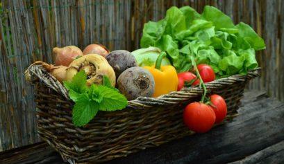 ser vegetariano e viajar