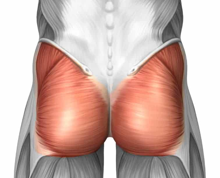 Squeezing the Glutes