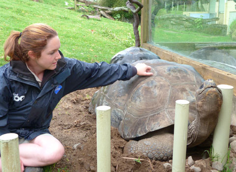 Auckland Zoo Galapagos