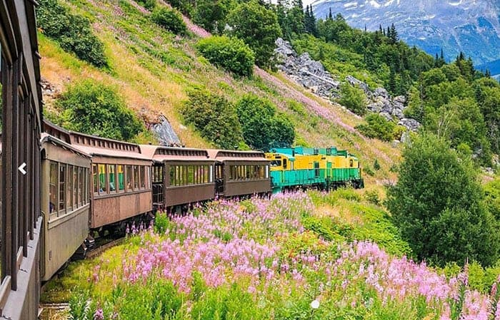 Train tour in alaska