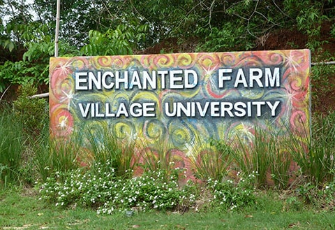 GK Enchanted Farm university