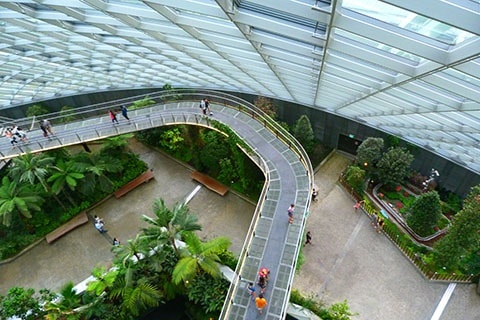 Gardens by Bay Cloud Forest