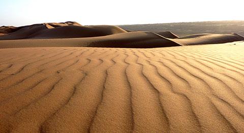 Oman sand dune