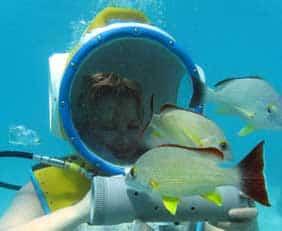 Helmet dive Tahiti