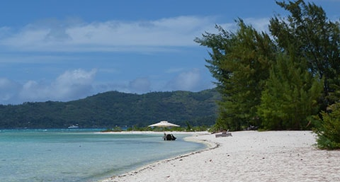 Hilton Bora Bora motu lunch