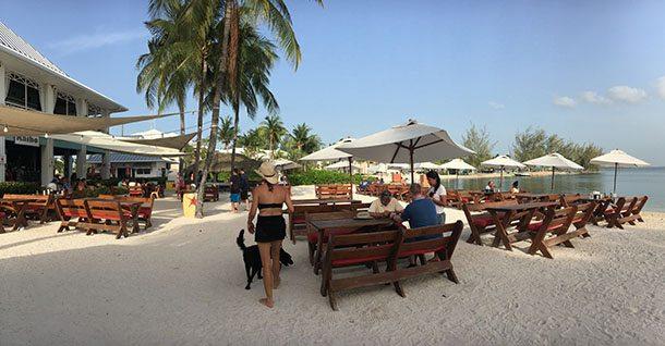 Beach bar Cayman