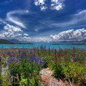 Mackenzie Country