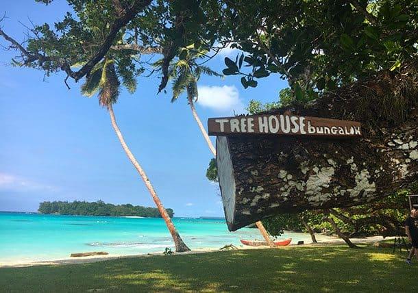 Santo treehouse