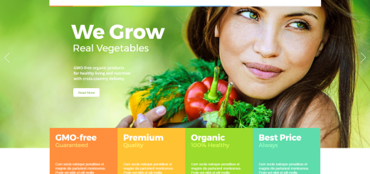 AgroFields - Grocery and Food Shop WordPress Theme