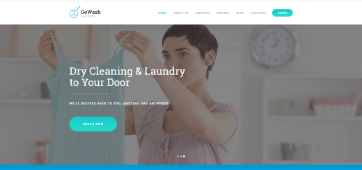 laundry and dry cleaning business theme
