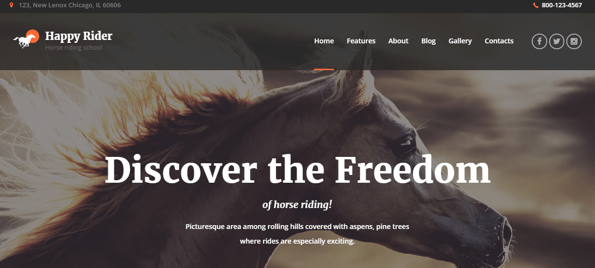 Horse Rider WordPress Theme