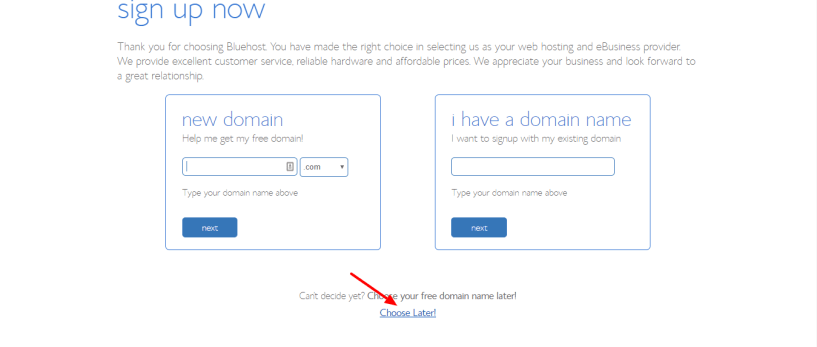 bluehost dicount promo- choose domain name