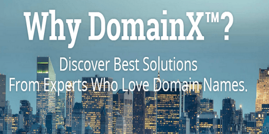 DomainX™ 2015 Conference   Bangalore  India Experience