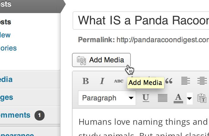 Add media - Building Website