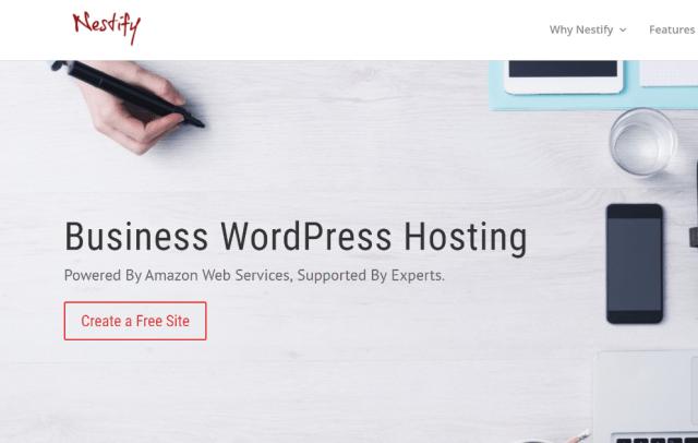 Nestify Hosting Review
