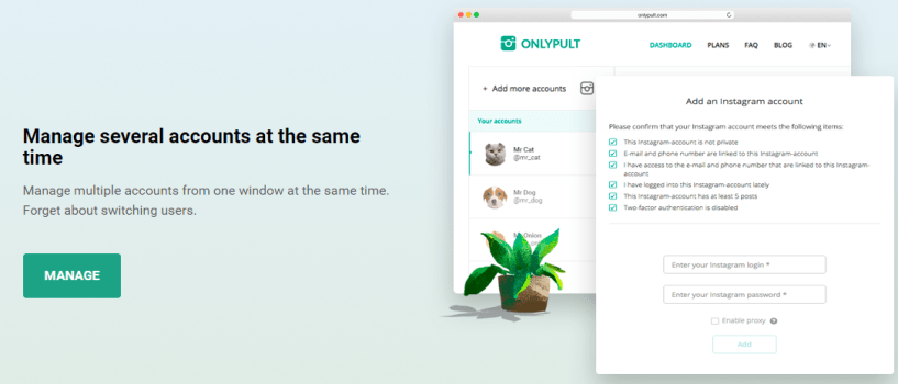Onlypult Review - Manage Accounts