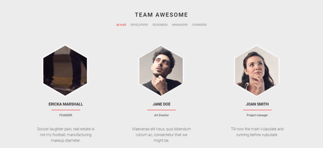 Team Showcase - WordPress Management Plugin