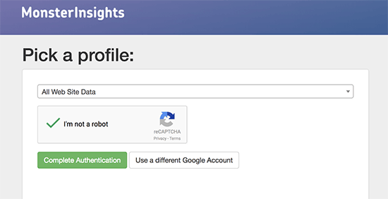 Google Analytics- Picking A Profile
