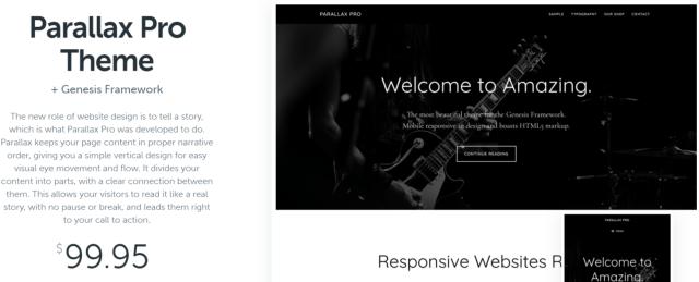 Parallax Pro - WordPress Blog Themes