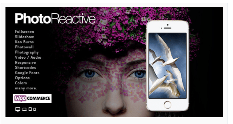 PhotoReactive-Photography WordPress Themes