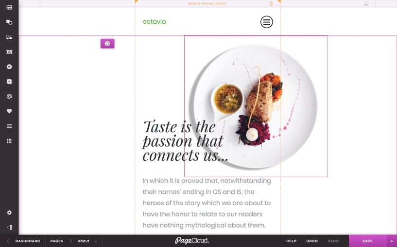 PageCloud Review- Features- Mobile Design