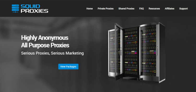 Squid proxies- Best Residential Proxy Network for SEO Link Building